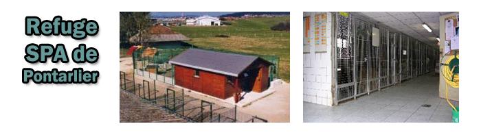 refuge de pontarlier 25 le journal de la protection animale. Black Bedroom Furniture Sets. Home Design Ideas